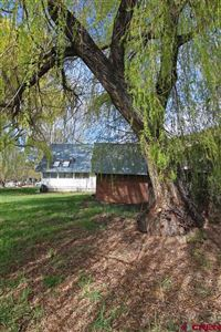 Tiny photo for 201 S 2nd Street, Dolores, CO 81323 (MLS # 754427)