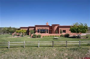 Photo of 27543 Road P, Dolores, CO 81323 (MLS # 733437)