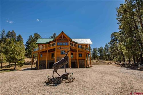 Photo of 2627 Trophy Lake Place, Pagosa Springs, CO 81147 (MLS # 781438)