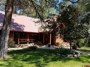 Photo of 21 Fiesta Place, Pagosa Springs, CO 81147 (MLS # 742443)
