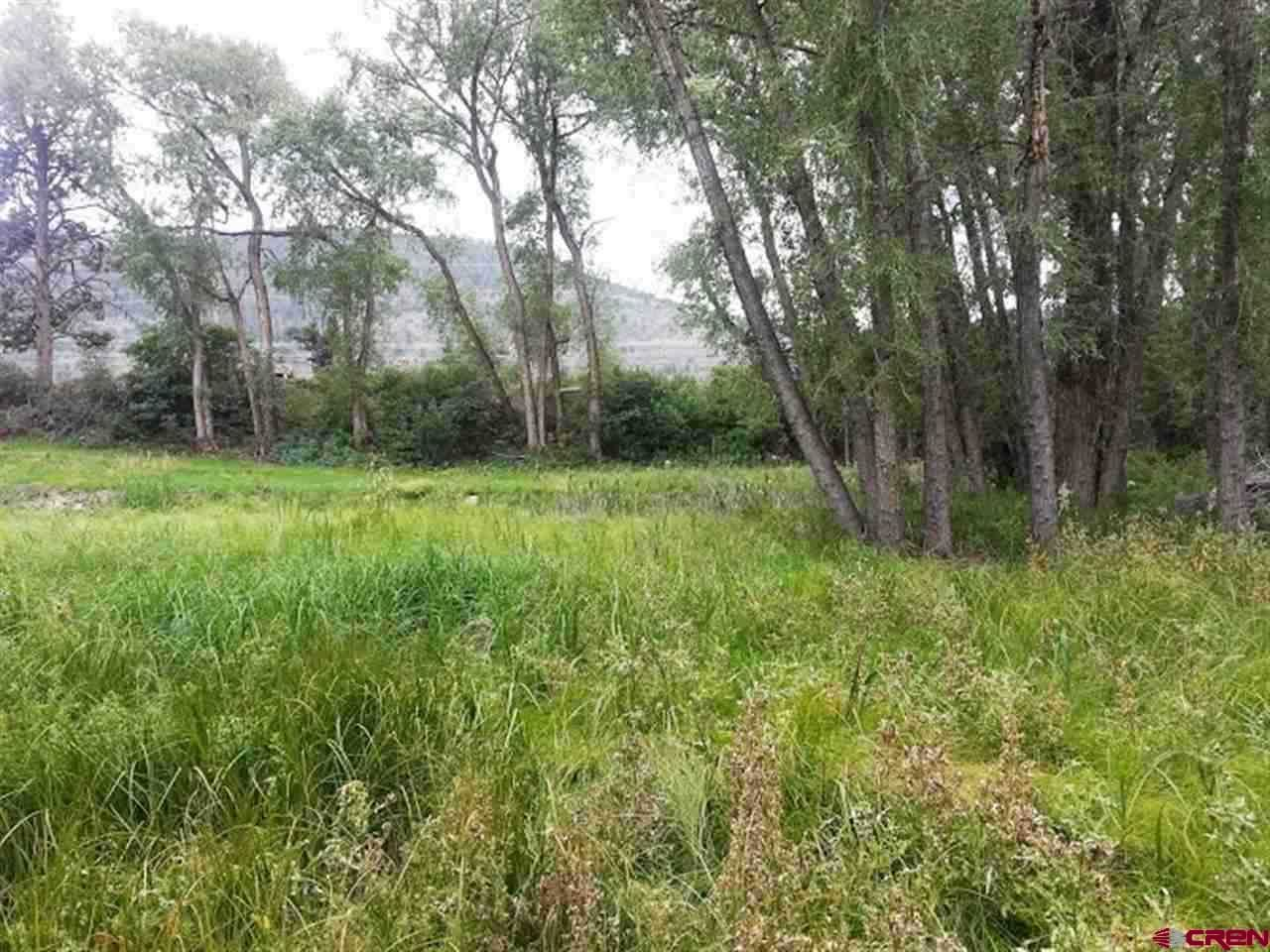 Photo of 29 Apache Trail, South Fork, CO 81154 (MLS # 764444)