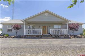 Photo of 460 NW Cedar Avenue, Cedaredge, CO 81413 (MLS # 759447)