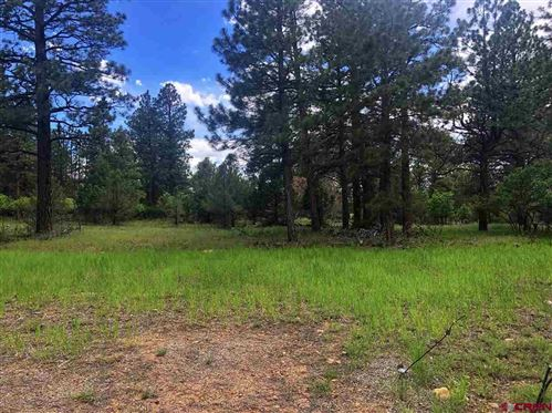 Photo of TBD S. Badger Trail, Ridgway, CO 81432 (MLS # 752449)