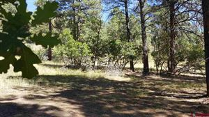 Photo of 2146 County Road 600, Pagosa Springs, CO 81147 (MLS # 741454)