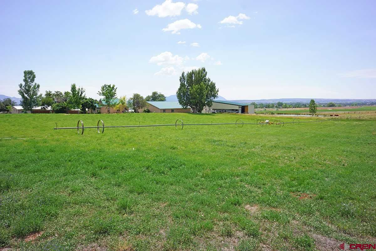 Photo for 14415 Road 26, Dolores, CO 81323 (MLS # 742459)