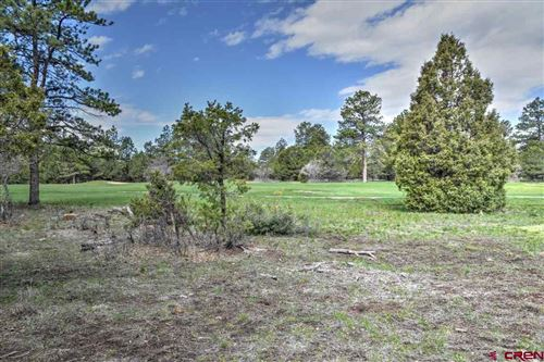 Photo of TBD - 536 N Badger Trail, Ridgway, CO 81432 (MLS # 772463)