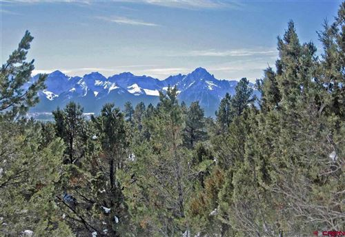 Photo of 180 Marmot Drive, Ridgway, CO 81432 (MLS # 758471)