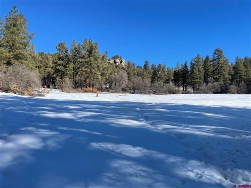 Photo of X3 CR 193, Pagosa Springs, CO 81147 (MLS # 781476)