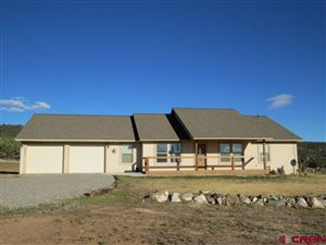 Photo of 18200 Surface Creek Road, Cedaredge, CO 81413 (MLS # 751477)