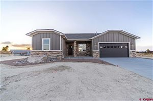 Photo of 3808 Scarlet Court, Montrose, CO 81401 (MLS # 757494)