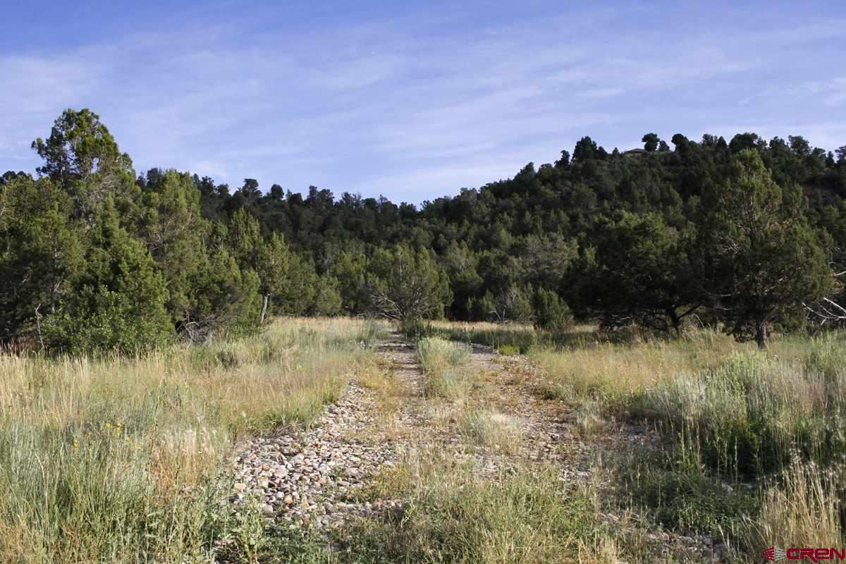 Photo for TBD Road J.9, Mancos, CO 81328 (MLS # 761501)