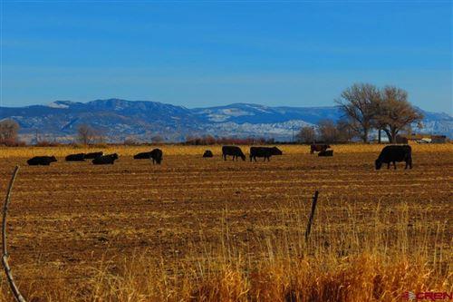 Photo of TBD Banner Rd, Olathe, CO 81401 (MLS # 778504)
