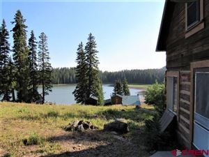 Photo of 21739 Baron Lake Drive, Cedaredge, CO 81413 (MLS # 759514)