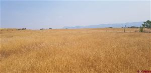 Tiny photo for 13884 Road 26, Cortez, CO 81321 (MLS # 758515)