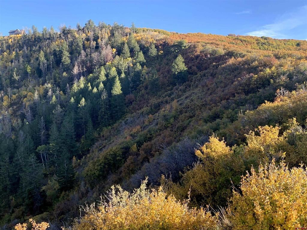 Photo for 9880 Road 28.8, Lot 52, Cahone, CO 81320 (MLS # 787521)