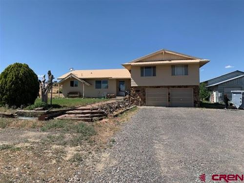 Photo of 20667 Vista Grande Drive, Austin, CO 81410 (MLS # 770522)