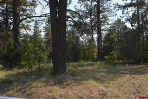 Photo of 2261 Crooked Road, Pagosa Springs, CO 81147 (MLS # 734523)