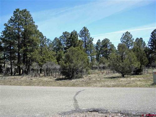 Photo of TBD Bear Cub Drive, Ridgway, CO 81432 (MLS # 759535)