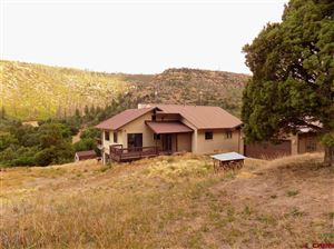 Photo of 5826 Road 46, Mancos, CO 81328 (MLS # 752538)