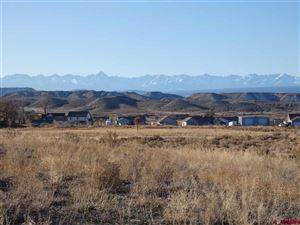 Photo of TBD LOT 6 6910 Court, Montrose, CO 81401 (MLS # 764539)