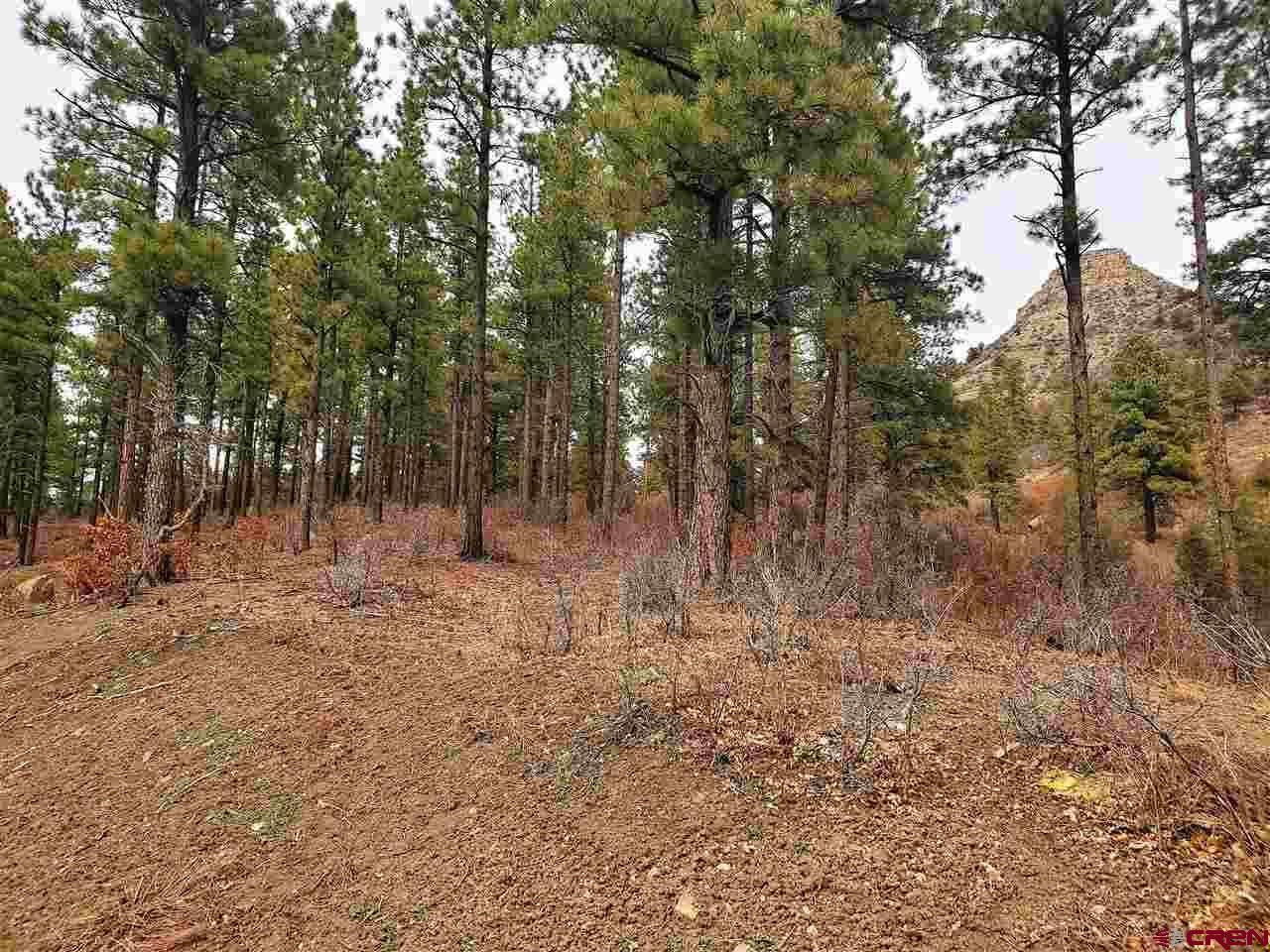 Photo of (Lot 87-1) 74 Bell Flower Court, Durango, CO 81301 (MLS # 767541)