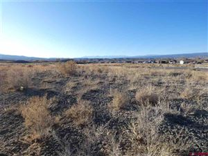 Photo of TBD LOT 8 6910 Court, Montrose, CO 81401 (MLS # 764542)