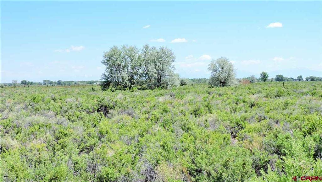 Photo of TBD Blue Spruce, Alamosa, CO 81101 (MLS # 759542)