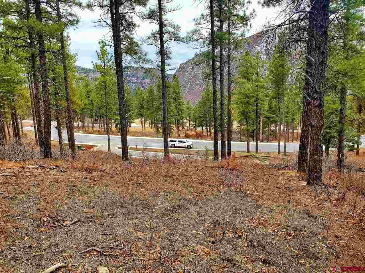Photo of (Lot 88-1) 20 Sego Lily Court, Durango, CO 81301 (MLS # 767542)