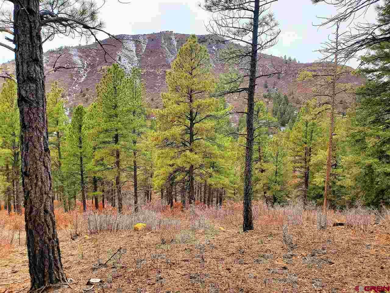 Photo of (Lot 90) TBD Sego Lily Court, Durango, CO 81301 (MLS # 767544)