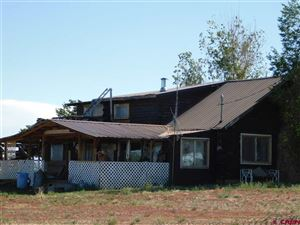 Tiny photo for 14942 Road 29, Dolores, CO 81323 (MLS # 747545)