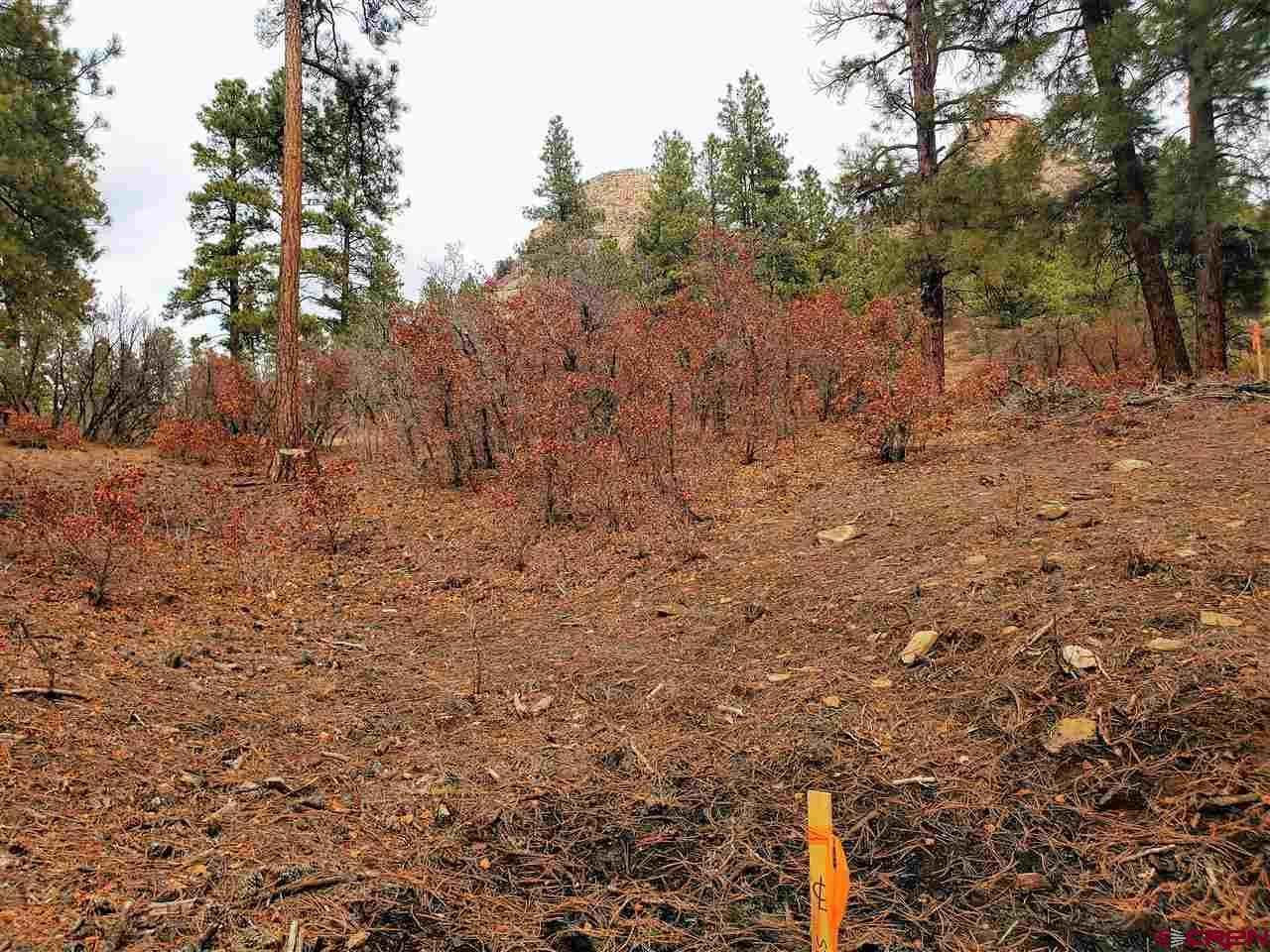 Photo of (Lot 92) TBD Sego Lily Court, Durango, CO 81301 (MLS # 767546)