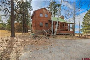 Photo of 221 Holiday Avenue, Pagosa Springs, CO 81147 (MLS # 764547)