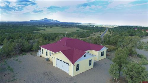 Photo of 24480 Road V.4, Dolores, CO 81323 (MLS # 785547)