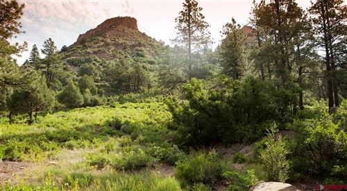Tiny photo for (Lot 14) 55 Larkspur Street, Durango, CO 81301 (MLS # 767552)