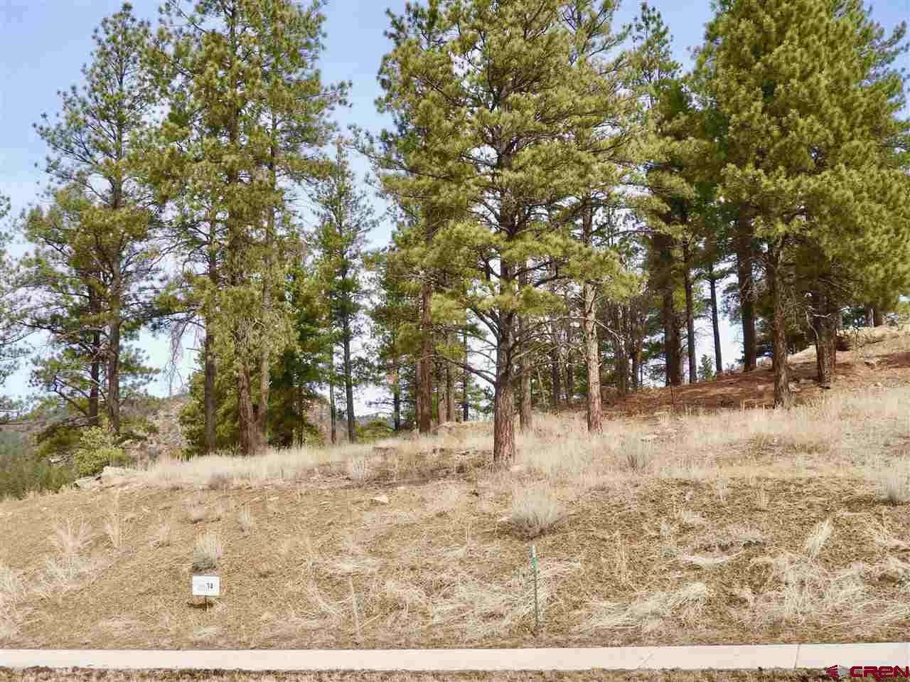 Photo for (Lot 14) 55 Larkspur Street, Durango, CO 81301 (MLS # 767552)