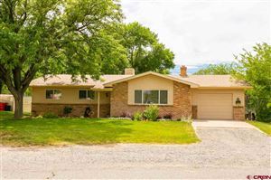 Photo of 241 Tyman Drive, Grand Junction, CO 81503 (MLS # 760557)