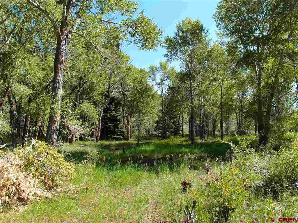 Photo of 0 County Road 15, South Fork, CO 81154 (MLS # 761564)