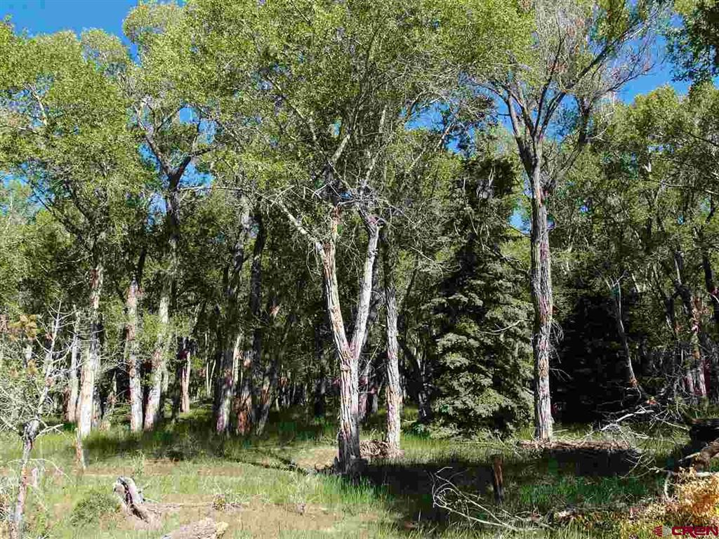 Photo of 0 County Road 15, South Fork, CO 81154 (MLS # 761566)