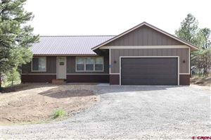 Photo of 42 Woodward Drive, Pagosa Springs, CO 81147 (MLS # 759567)