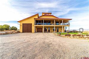 Photo of 19754 DAVE WOOD Road, Montrose, CO 81403 (MLS # 763572)