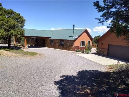 Photo of 551 Pine Drive, Ridgway, CO 81432 (MLS # 769581)