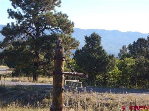 Photo of 1318 Marmot Drive, Ridgway, CO 81432 (MLS # 771581)