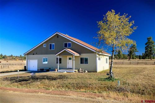 Photo of 136 Sam Houston Avenue, Pagosa Springs, CO 81147 (MLS # 775581)