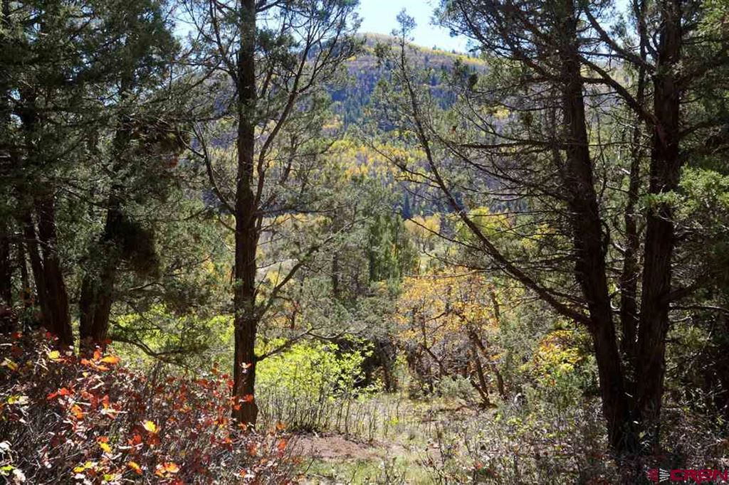 Photo for TBD Road 40.4, Dolores, CO 81323 (MLS # 748585)
