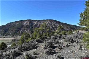 Tiny photo for 758 Golden Eagle Trail, Ridgway, CO 81432 (MLS # 756597)