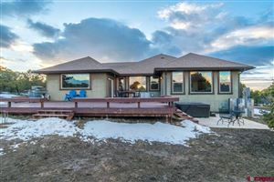 Photo of 1724 Ponderosa Drive, Ridgway, CO 81432 (MLS # 755609)