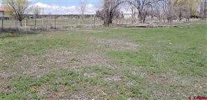 Tiny photo for TBD Road N.8 Loop, Cortez, CO 81321 (MLS # 753611)