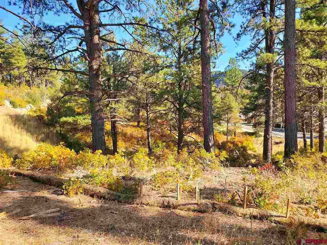 Photo of (Lot 58) TBD Wild Iris Avenue, Durango, CO 81301 (MLS # 752612)