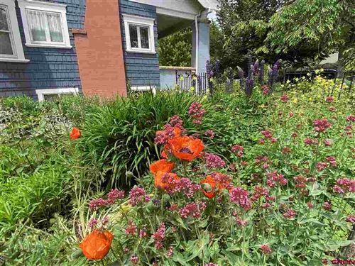 Tiny photo for 216 Poplar Avenue, Paonia, CO 81428 (MLS # 778613)