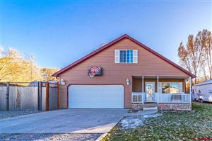 Photo of 1196 Normandy Road, Montrose, CO 81403 (MLS # 764619)
